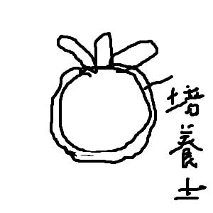 Cocolog_oekaki_2010_07_15_21_54